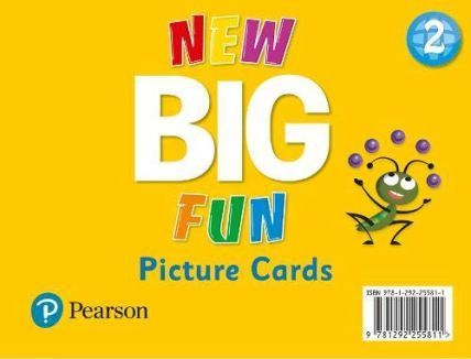 New Big Fun 2 Picture Cards